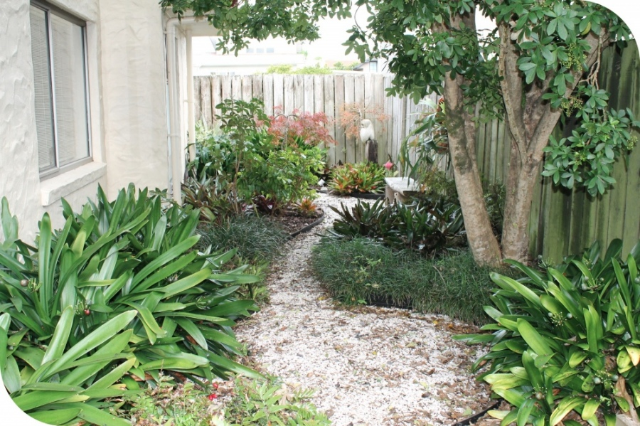 Online garden design services services for Small garden designs nz